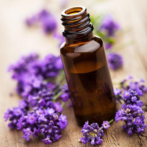 L'essentielle aromathérapie